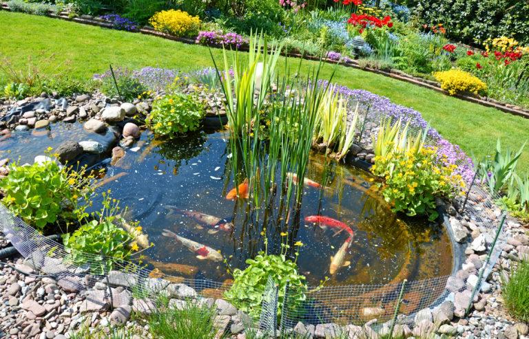Pond-noun  pɒnd