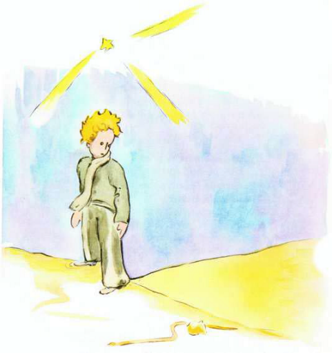 free download english book for kids+pdf -The Little Prince for Level 2