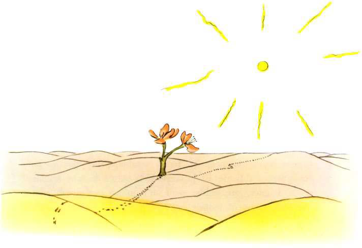 free download english learning books for kids+pdf -The Little Prince for Level 2